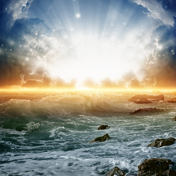Rough Seas of Life